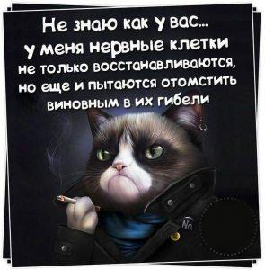 https://777russia.ru/forum/uploads/1623/thumbnail/p1a95aonbm12c3s1g1g724j7hqj1.jpg