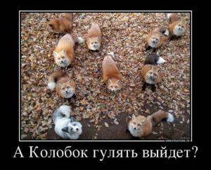 https://777russia.ru/forum/uploads/1746/thumbnail/p1ab26fpum8e91tc01hp218161cva2.jpg